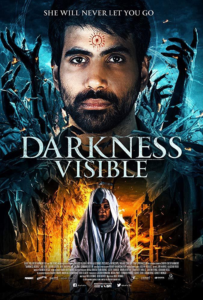 Darkness Visible 2019 HDRip XviD AC3-EVO [TD]