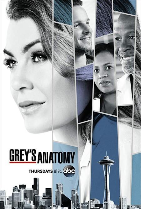 Greys Anatomy S15E13 720p HDTV x265-MiNX