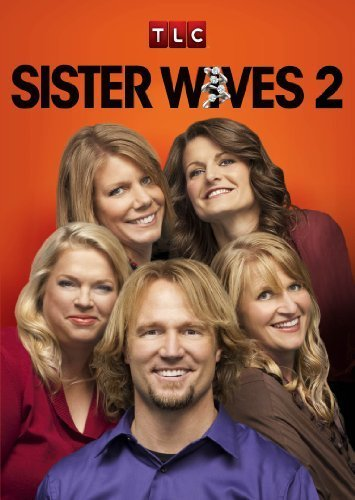 Sister Wives S13E05 480p x264-mSD