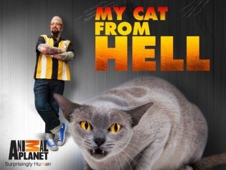 My Cat From Hell S05E10 Demon Cat 480p x264-mSD