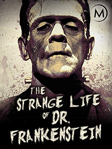The Strange Life Of Dr Frankenstein (2018) HDTV x264  W4Frarbg