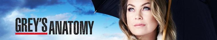 Greys Anatomy S15E20 720p HDTV x265-MiNX