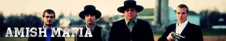 Amish Mafia S03E08 Shepherds End INTERNAL 720p WEBRip x264-GIMINI