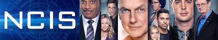 NCIS S16E22 and Executioner 720p AMZN WEB-DL DDP5 1 H 264-NTb