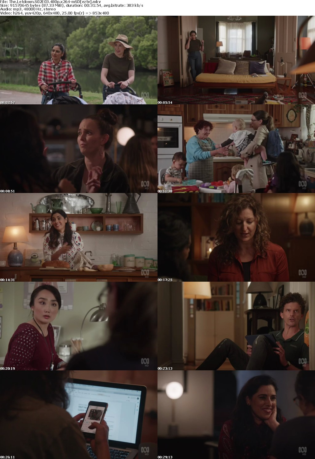 The Letdown S02E03 480p x264-mSD