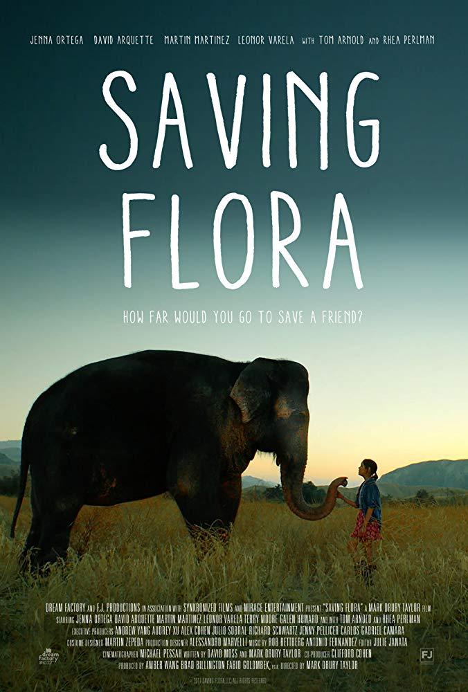 Saving Flora 2018 1080p AMZN WEBRip DDP5 1 x264-CM