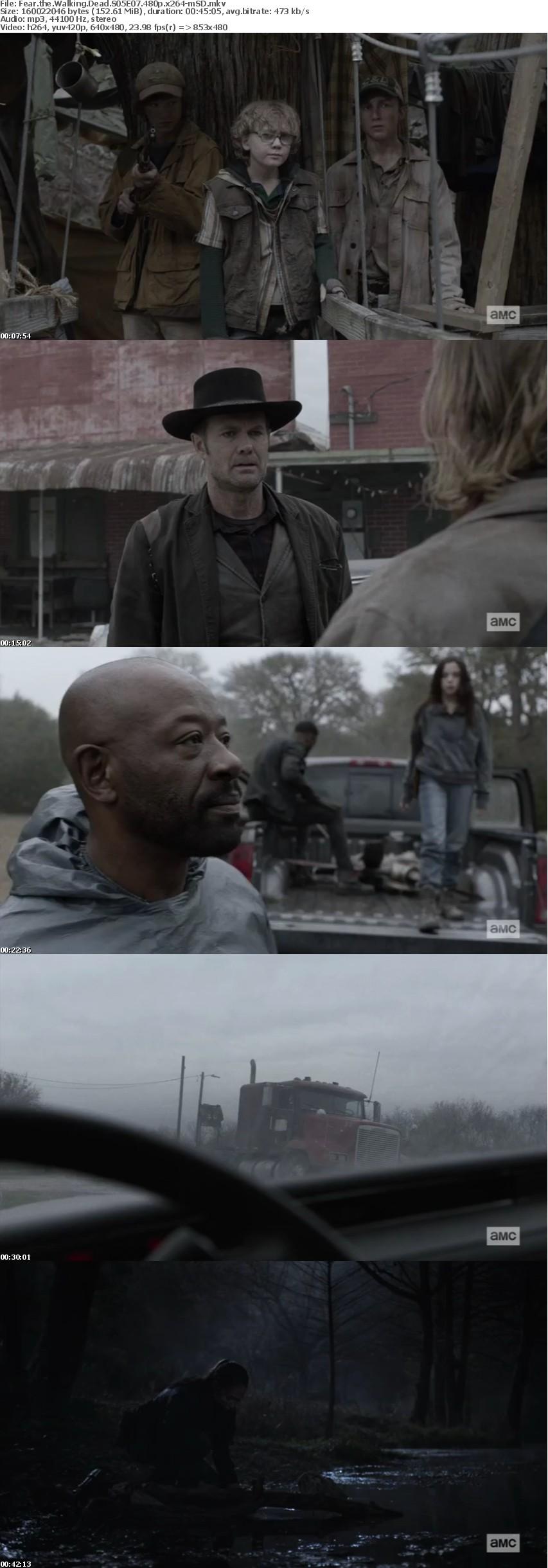Fear the Walking Dead S05E07 480p x264-mSD