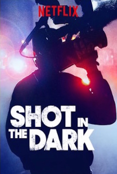 Shot in the Dark (2017) 1080p WEBRip x264 RARBG