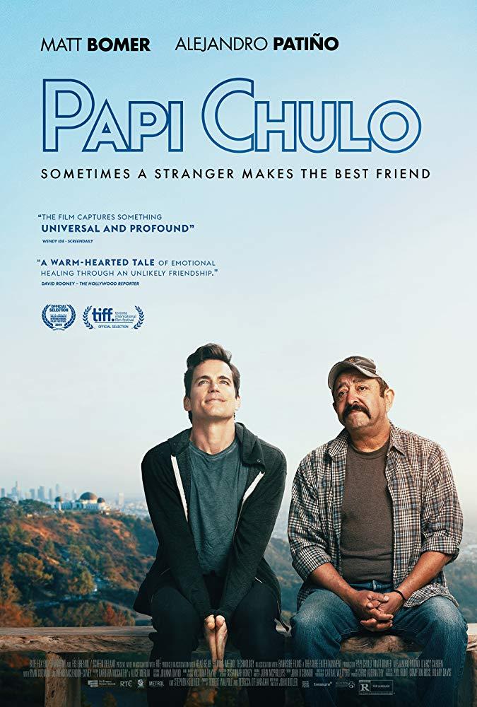 Papi Chulo 2018 HDRip XviD AC3-EVO[EtMovies]