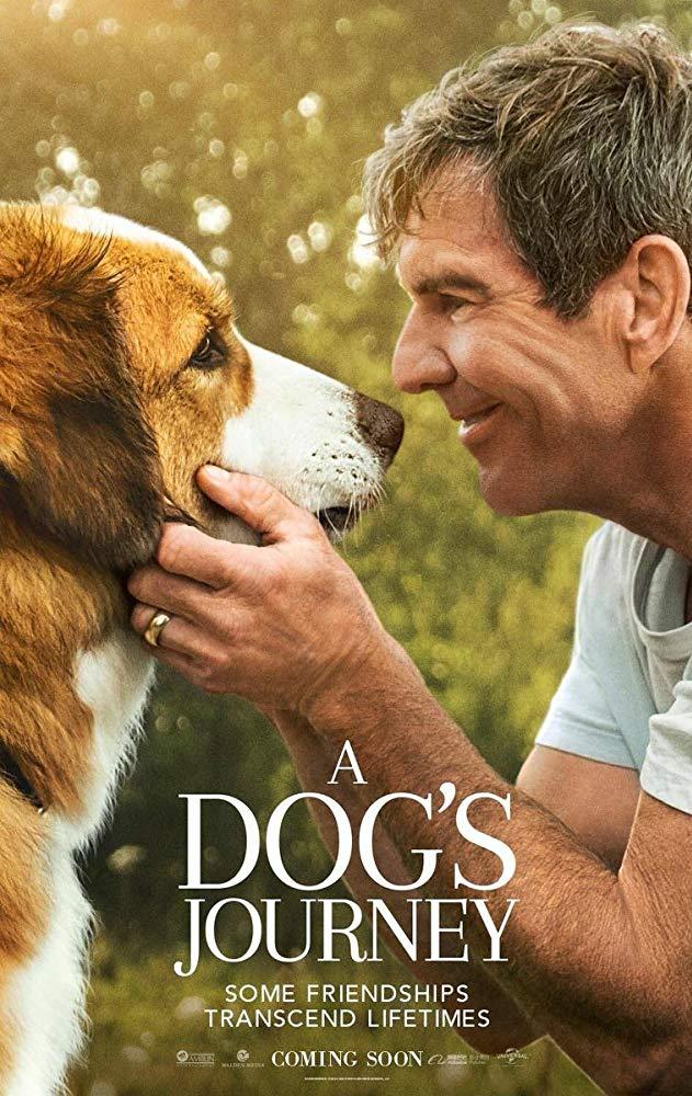 A Dogs Journey 2019 720p BluRay 800MB x264-GalaxyRG