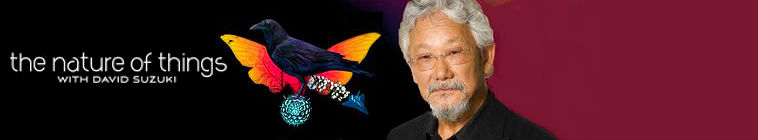 The Nature of Things with David Suzuki S59E02 WEBRip x264 CookieMonster