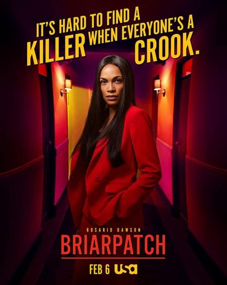 Briarpatch S01E07 720p WEBRip x264-XLF