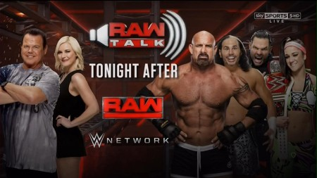WWE Monday Night Raw 2020 04 13 HDTV x264-NWCHD