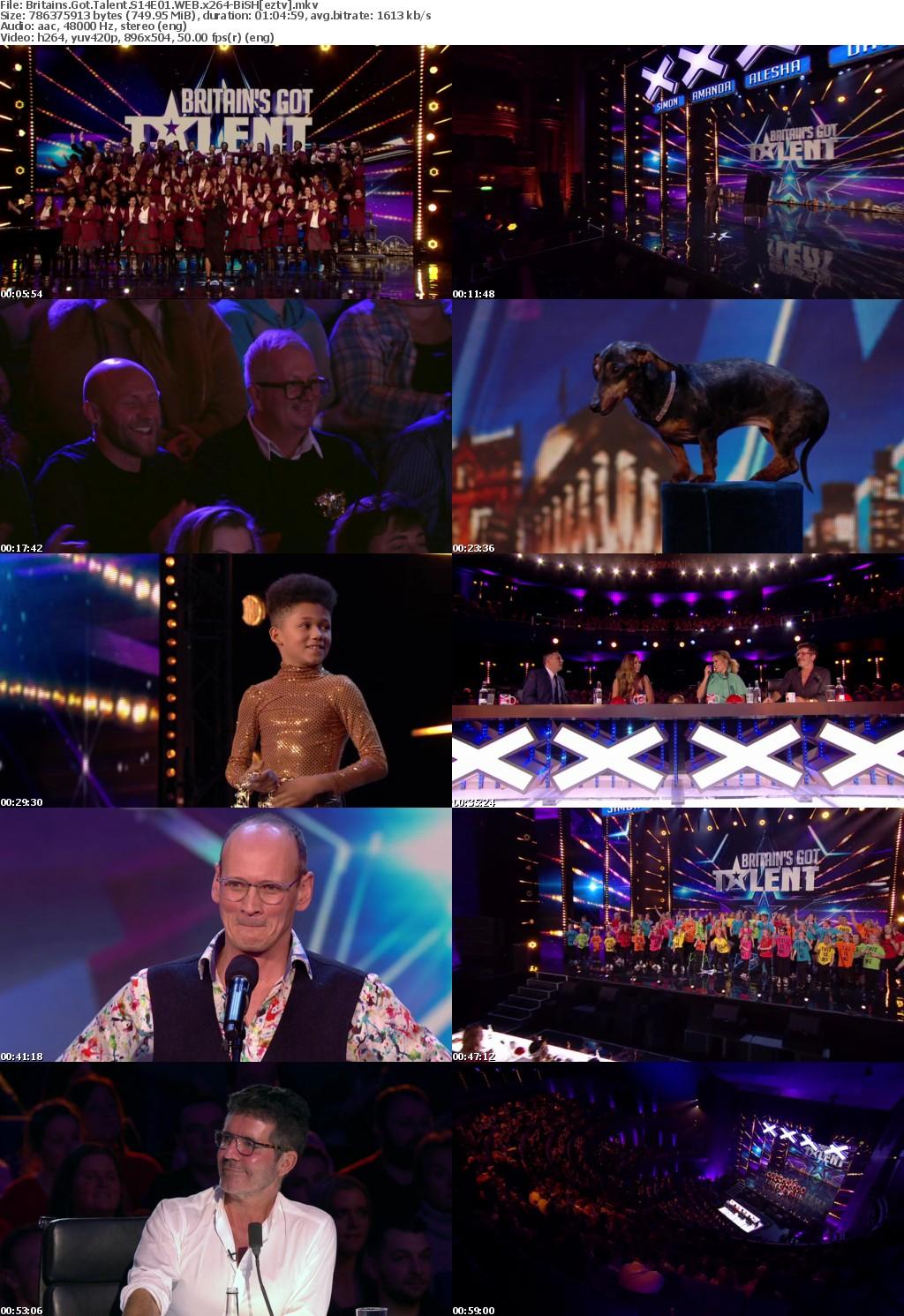 Britains Got Talent S14E01 WEB x264-BiSH