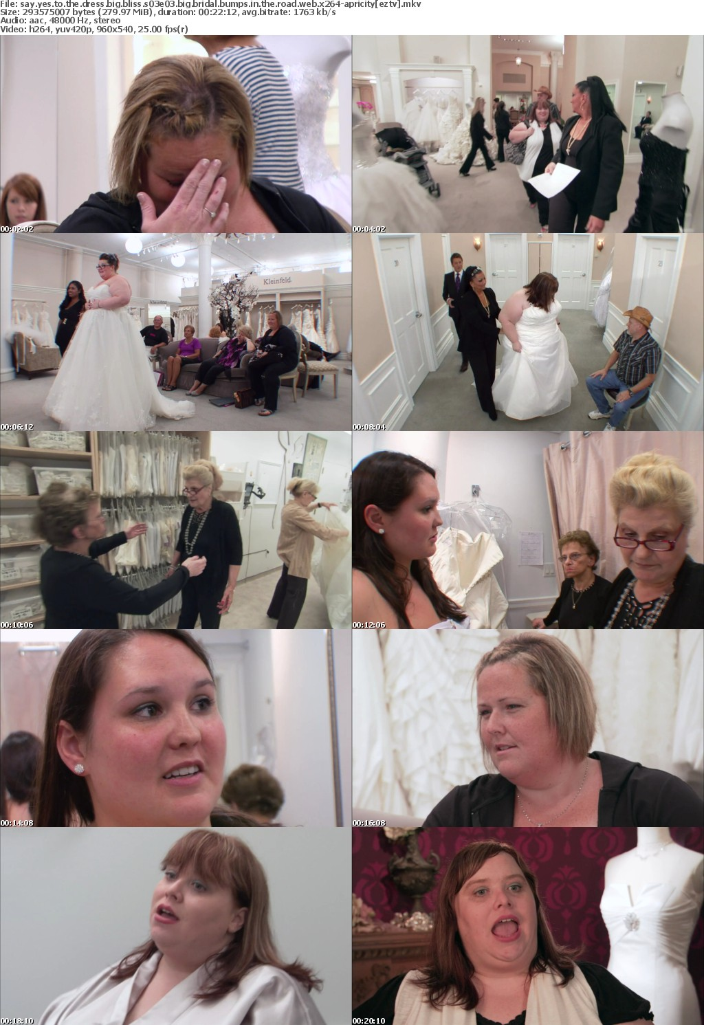 Say Yes to the Dress Big Bliss S03E03 Big Bridal Bumps in the Road WEB x264-APRiCiTY