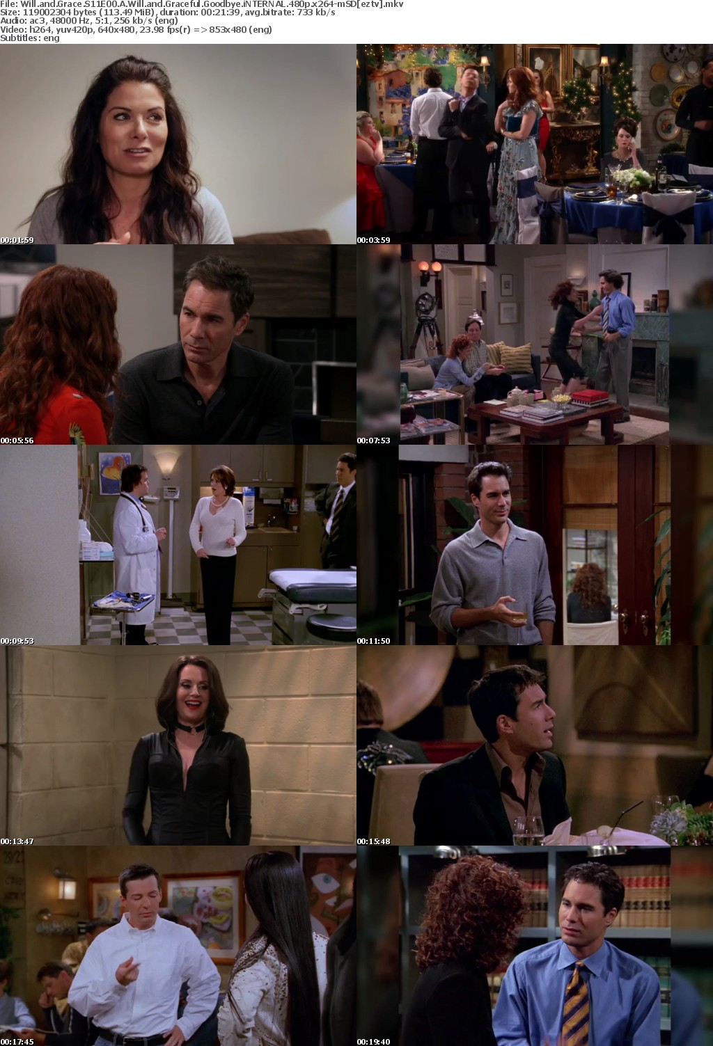 Will and Grace S11E00 A Will and Graceful Goodbye iNTERNAL 480p x264-mSD
