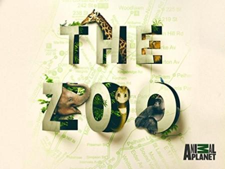 The Zoo US S04E05 Wallaby in the City 720p HDTV x264-CRiMSON