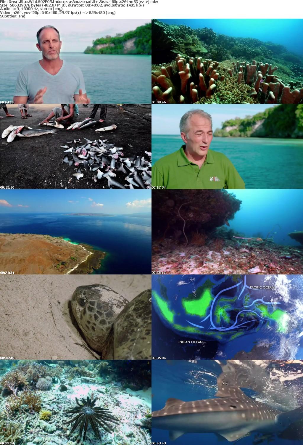Great Blue Wild S02E05 Indonesia-Amazon of the Seas 480p x264-mSD