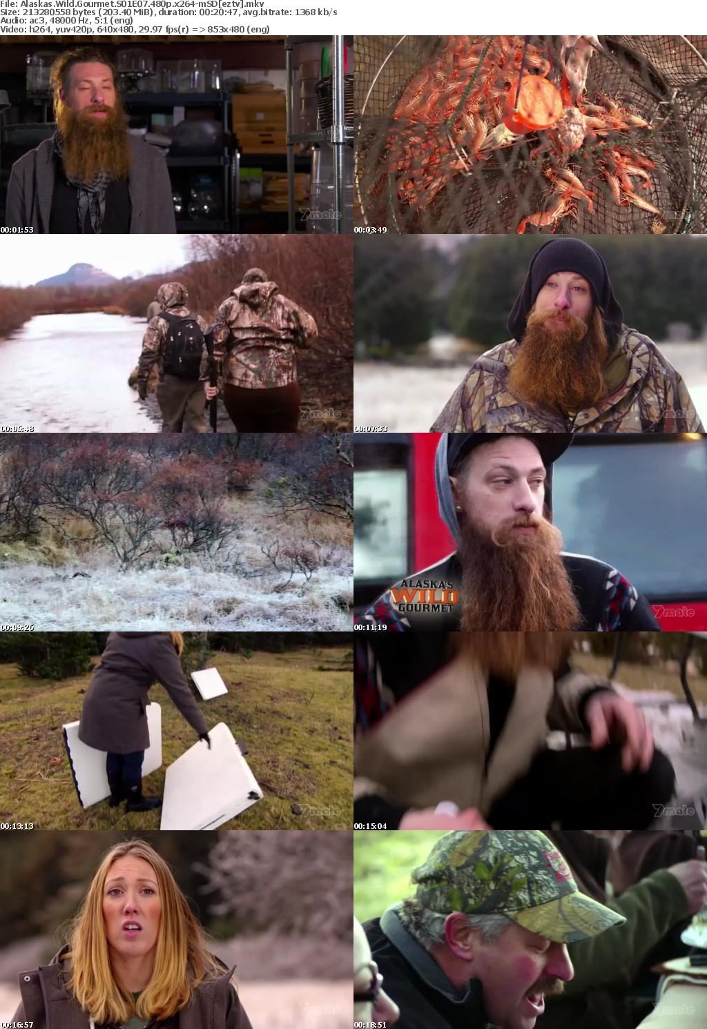 Alaskas Wild Gourmet S01E07 480p x264-mSD