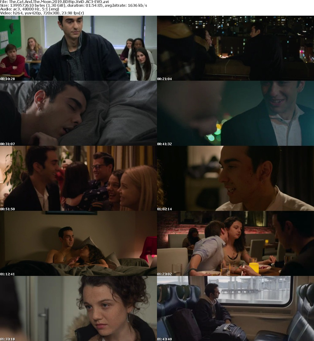 The Cat And The Moon 2019 BDRip XviD AC3-EVO