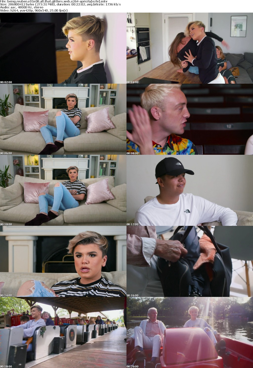 Being Reuben S01E08 All That Glitters WEB x264-APRiCiTY