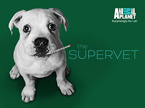 The Supervet S09E08 720p HDTV x264-CBFM