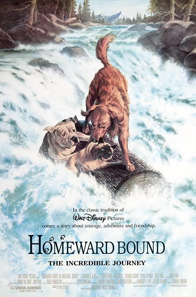 Homeward Bound The Incredible Journey 1993 1080p WEBRip x265-RARBG