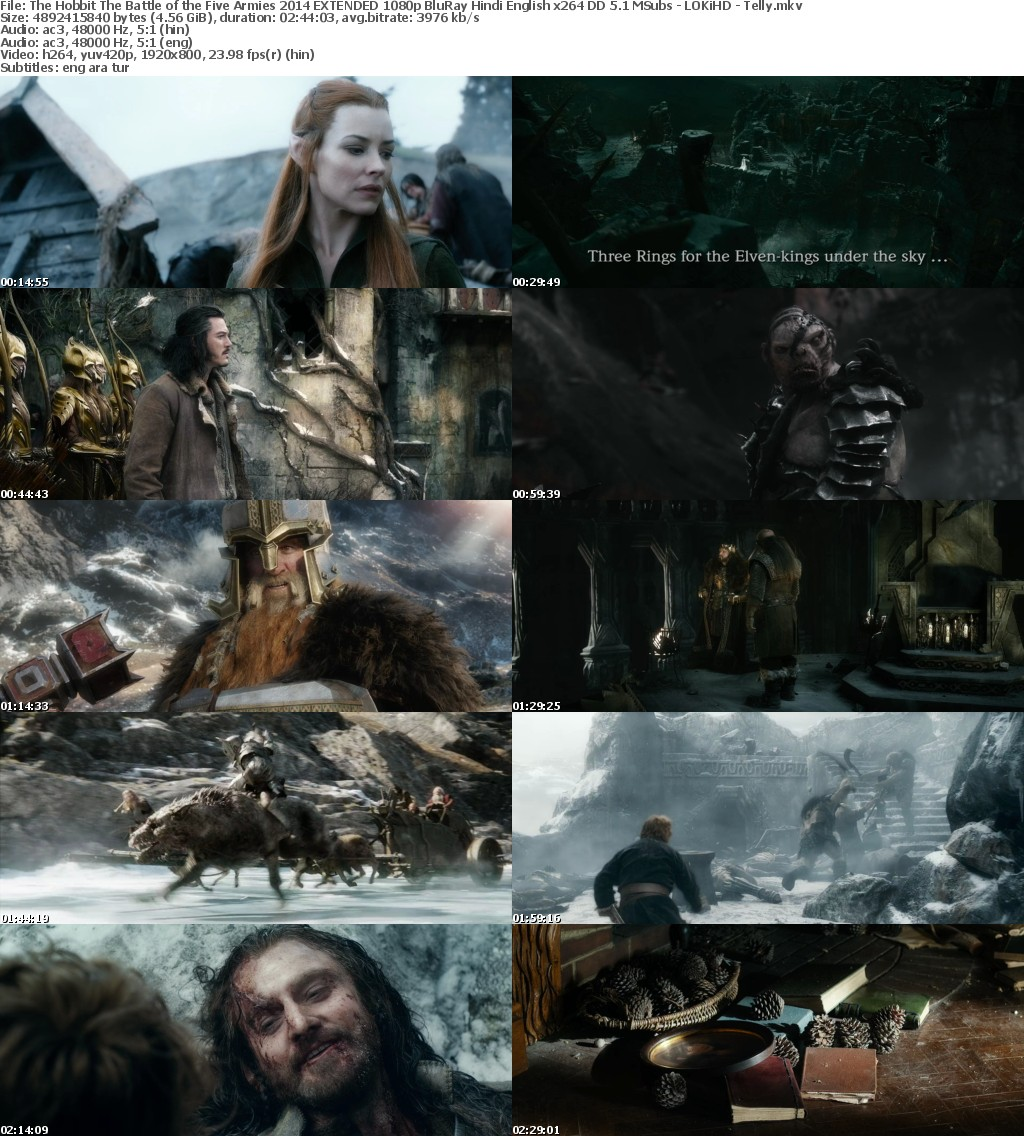 The Hobbit The Battle of the Five Armies (2014) EXTENDED 1080p BluRay Hindi English x264 DD 5.1 MSubs - LOKiHD - Telly