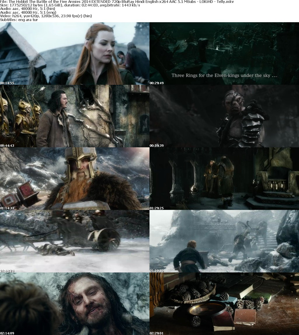 The Hobbit The Battle of the Five Armies (2014) EXTENDED 720p BluRay Hindi English x264 AAC 5.1 MSubs - LOKiHD - Telly