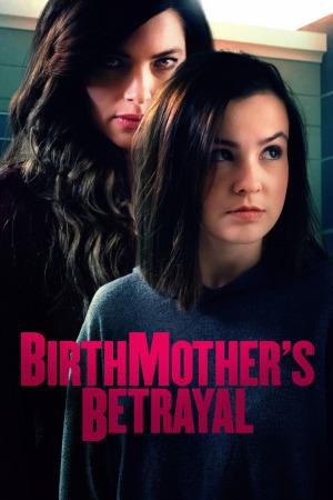 Birthmothers Betrayal (2020) 480p HDTV x264-RMTeam