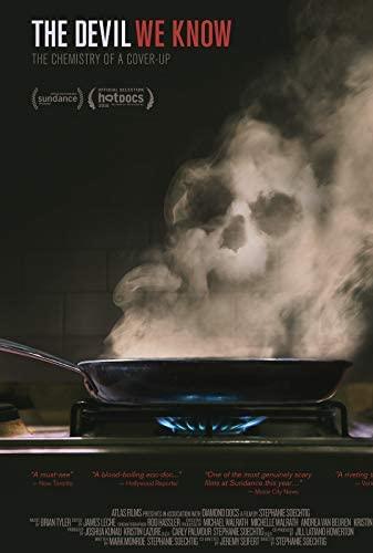 The Devil We Know (2018) [1080p] [WEBRip] [YTS MX]