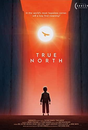 True North 2020 720p WEB HEVC x265-RMTeam