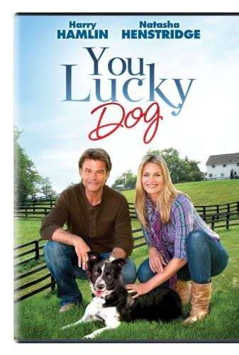 You Lucky Dog 2010 [720p] [WEBRip] YIFY