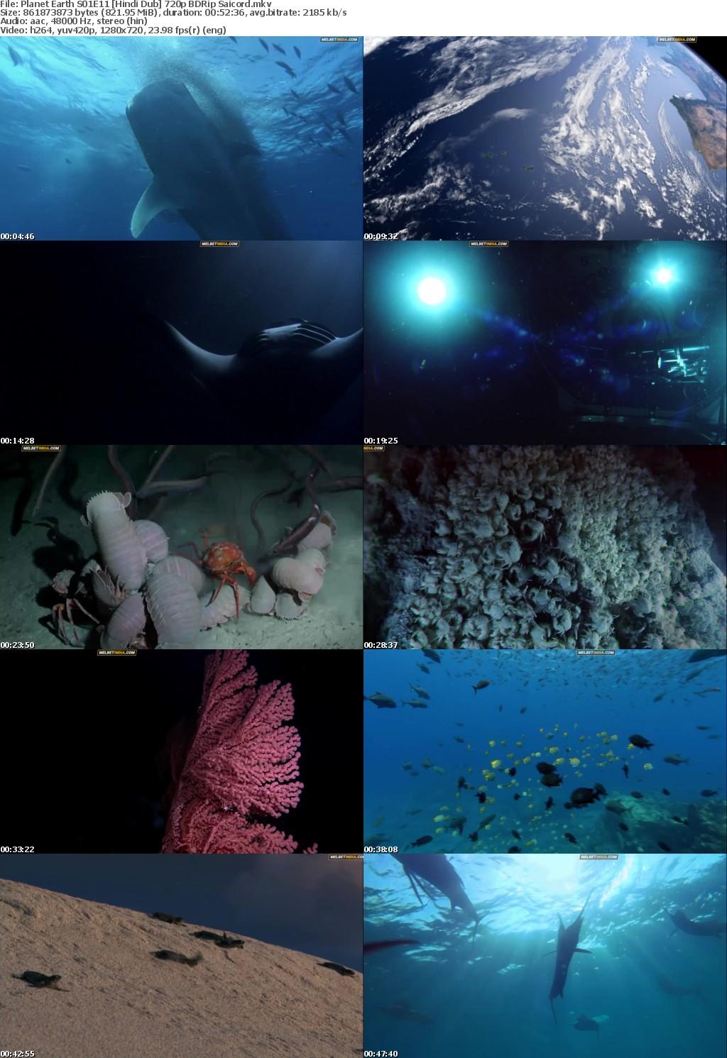 Planet Earth S01E11 Hindi Dub 720p BDRip Saicord